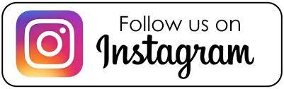 Follow High Street Gypsy Cobs on Instagram