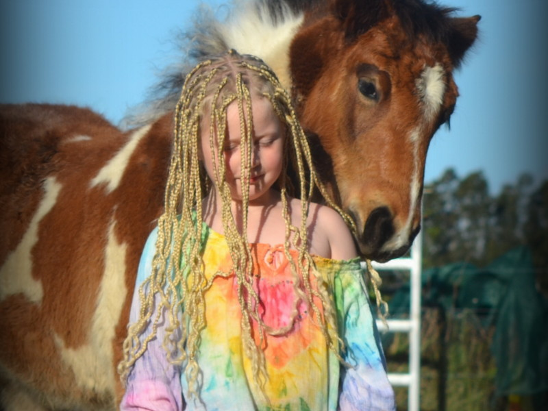 Horse friendly accomodation, pet friendly accomodation australia, Ballina accomodation, horse friendly, camping . bed & breakfast,